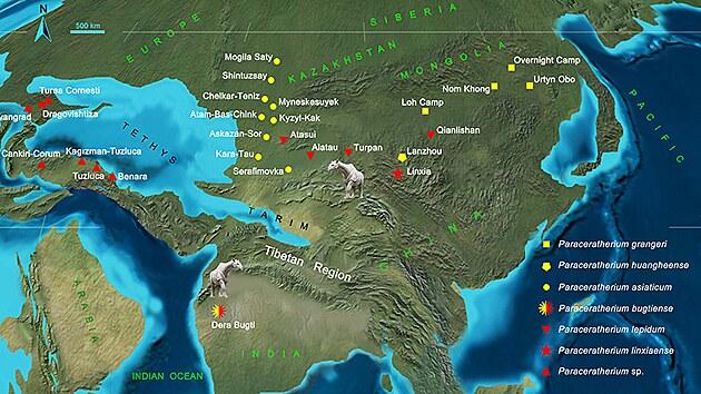 Mapa rozmístění obřích nosorožců. Žlutě jsou označené druhy ranného a červeně pozdního Oligocénu.