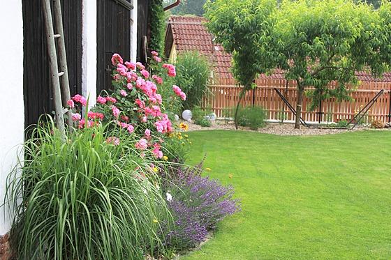 Trávník ve dvoře je vzorně udržovanı, i kdž by ho majitelé nejraději zmenšili.