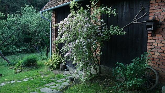 Dřevěnku se stodolou svépomocí zrekonstruovali a současně budovali přírodní zahradu.