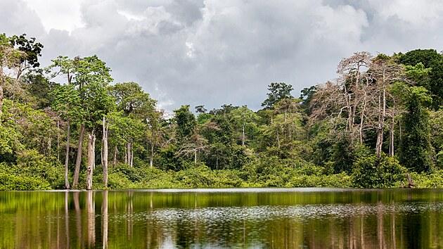 Řeka v Gabonu