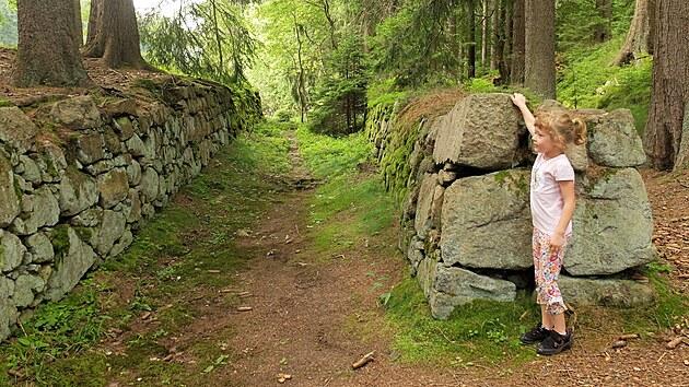Pozůstatky středověkého vodního u Komářích rybníků ve Slavkovském lese.