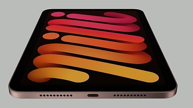 iPadu mini pro rok 2021 nabídne USB-C konektor.