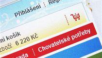 Czech shoppers lead CEE in e-commerce 45a2589d40