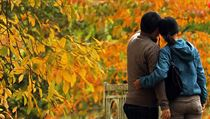 A couple photographs themselves with trees in autumn colour at Sheffield Park... | na serveru Lidovky.cz | aktu�ln� zpr�vy