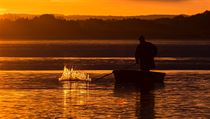 Rybářství Třeboň se na tuzemské produkci ryb podílí 15 až 18 procenty.