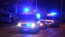 V Řepích zasahovaly desítky policistů ze všech dostupnıch hlídek z okolí.
