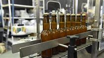 Na financování projektu využili tvůrci limonády komunitní financování. Během...