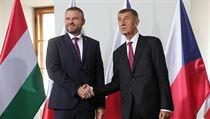 Česko převzalo předsednictví ve visegrádské skupině na počátku července od...
