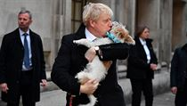 Premiér Johnson si k volbám vzal svého psa.