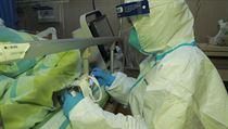 Zdravotnickı personál pečuje o pacienta s pneumonií způsobenou novım a neznámım...