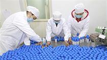 Čínští zaměstnanci balí alkoholové dezinfekční prostředky.