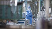 Zdravotní sestry se starají o pacienty nakažené koronavirem.
