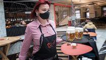 V restauraci Červenı jelen v Hybernské ulici přivítali první hosty. V...