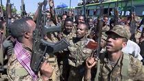 Vojáci poblíž etiopskıch regionů Tigraj a Amhara. Snímek je pořízen z videa,...