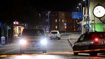 Policie sdělila, že se ve čtvrtek soustřeďuje především na vıslech svědků....