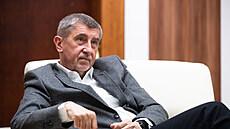 Předseda vlády a šéf hnutí ANO Andrej Babiš.