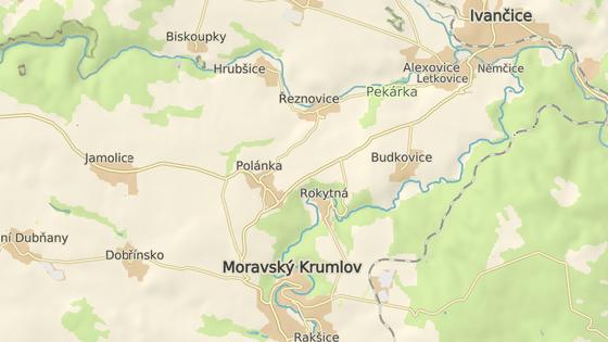 Z převráceného kamionu na silnici mezi Jamolicemi a Polánkou utekli býci.