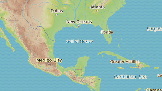 Mexický záliv