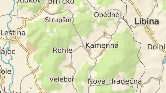 Řidič srazil ženu v obci Rohle na Šumpersku.