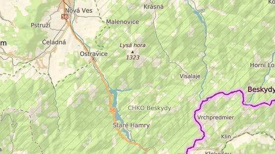 Medvěd se pohybuje v okolí potoku Řečice, poblíž obory Jatný.