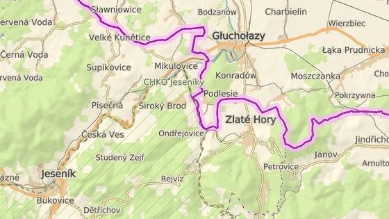 Auto narazilo do sloupu bývalé celnice na silnici ze Zlatých Hor do Glucholaz.