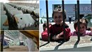Děti a ženy se bojí vycházet po setmění! Dobrovolníci z řeckých uprchlických...