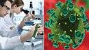 Českým vědcům se podařil průlomový objev. Zjistili, že virus HIV je mnohem...