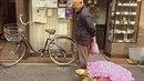 Hisao Mitani je v ulicích Tokya hvězdou. Japonský děda každý den líně venčí v...