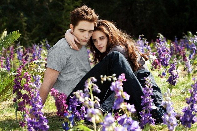 Bella a Edward z Twilight ságy