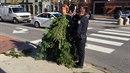 Podivná kauza z Portlandu: muž v kostýmu stromečku odmítal odejít z přechodu a...