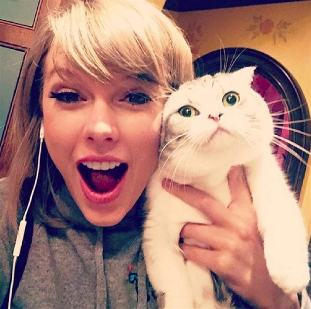 Taylor Swift a Meredith Grey