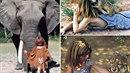 Život v džungli. Tak by se dalo popsat dětství Tippi Degreové, která se svými...