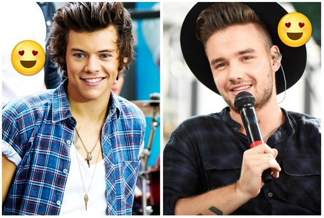 Harry Styles / Liam Payne