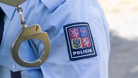 Policie má ve svých řadách pořádného bijce.