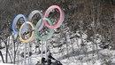 Olympijské kruhy u biatlonové trati.