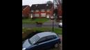 Poník utíkal před policejní hlídkou.