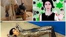 V sídle společnosti Youtube střílela zhrzená íránská youtuberka.