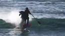 Surfař se postavil do cesty delfínovi a ten ho nemilosrdně srazil.