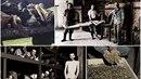 Kolorované fotografie nabízejí nový pohled na život během holokaustu.