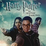 Harry, Ron a Hermiona v podání aktivistů z Legally Black.