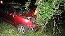 Opilá řidička sjela ze silnice a nabourala do stromu.