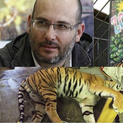 """0945beba327 Zákaz zvířat v cirkusech se blíží. """"Vypustíme lvy a tygry na ..."""