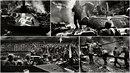 Zatímco ostatní fotografové se při invazi v roce 1968 drželi spíše v ústranní,...