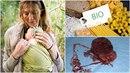 Bio matky jsou fenoménem dnešní doby.