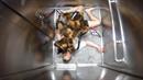 Děsně vymakaná skrytá kamera s pavoučím psem vás vyděsí k smrti