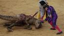 Zabíjení velociraptora v ringu ukazuje na nesmyslnost býčích zápasů