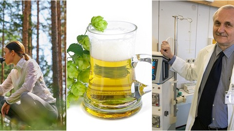 Pivo ledvinám neškodí, říká přednosta Kliniky nefrologie 1. LF UK a Všeobecné...
