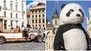 Pražský magistrát plánuje posvítit si na provozovatele vyhlídkových jízd...