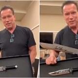 Arnold Schwarzenegger si utahoval ze Sylvestera Stalloneho.