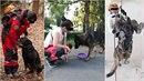 Petra psům zasvětila život. Zemřela, když šla svoje parťáky cvičit do parku.